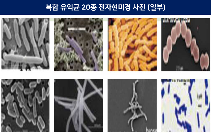 복합유익균 사진.png